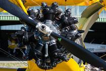 Boeing Stearman (D-EQXL)