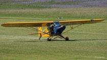 Piper PA-18 Supercub - D-EHCO