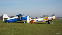 North American AT-6 Texan (D-FASS), Antonov An-2 (D-FOKY)
