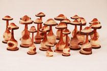Pilze aus Eibe