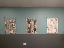 CELLS, 2020, charcoal on paper, StayOkay Utrecht Centrum.  (Left drawing currently on loan)