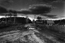 Babici, contaminated lands. Gomel (Belarus)