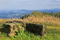 Grundmauern eines verlassenen Hofs auf der Oberbreitenau