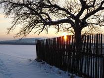 Schnee und Abendsonne im März