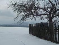 Mehr Schnee im Februar