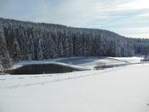 Vue hivernale sur les étangs depuis la terrasse