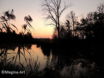 *still ruht der See* De Wittsee