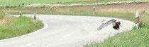 Storch fliegt im Tiefflug über sie Straße   Foto:AktionPfalzstorch