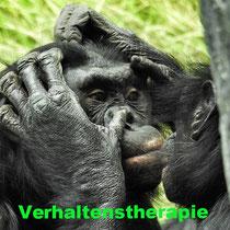 Verhaltenstherapie, kognitive Verhaltenstherapie, Verhalten, anerkannte Therapieverfahren, Seele baumelt