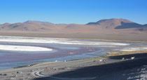 Laguna Colorada, 4278m, Bolivien