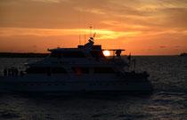 Sonnenuntergang vor Isla Santa Cruz