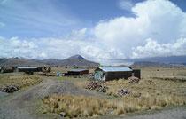 im Altiplano, Peru