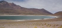 Laguna Miscanti, 4000m