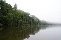 Parque Nacional de Manú, Peru