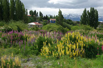 El Maiten, Chile