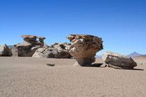 Arbol de Piedra, Desert Siloli, Bolivien