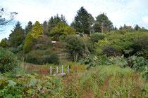Glenwahan Garden, Dunragit