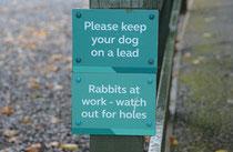 Minehead, Exmoor NP, GB