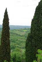Landschaft zwischen Buje - Pazin