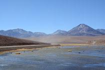 Laguna am Weg nach San Pedro de Atacama