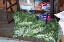 Coca-Blätter für den Verkauf, Peru