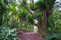 Jardin des Epices