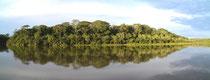 am Rio Madre de Dios, Peru