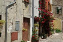 Buje, Istria