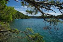 Salzsee Veliko Jezero, Insel Mljet