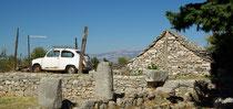 Skrip, Insel Brac