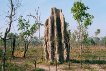 Kakadu NP