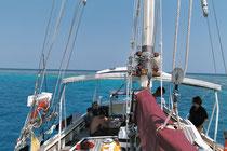 Tauchen und Segeln im Great Barrier Reef