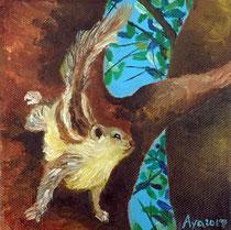 リス: 150×150mm Canvas Oil 2017