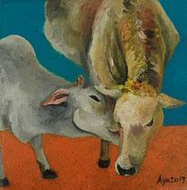牛: 150×150mm Canvas Oil 2017