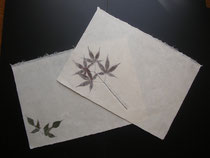 生の葉っぱ、糸、布、紙、漉く時に入れてます