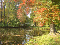 Spreewald im Herbst