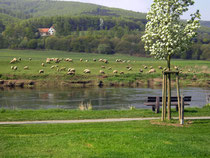 Weseridyll Ostern 2009