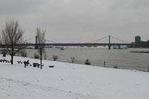 Laar - Rheinpartie mit Blick auf die Friedrich-Ebert-Brücke zwischen Ruhrort und Homberg