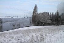 Alsum - am Rhein