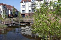 Mai 2013 - Der lange Winter in diesem Jahr ging vielen Duisburgern auf die Nerven. Jetzt wird es so ganz langsam Frühling - die schönste Jahreszeit. Endlich blüht und grünt es - auch hier im Wohndorf Laar.