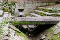 """November 2008 - Seit 1563 ist im Duisburger Stadtwald der """"Heilige Brunnen"""" bekannt, der in vorgeschichtlicher Zeit eine Kultstätte war. Heute weiß man, dass das Wasser keine wundertätige Heilkraft hat."""