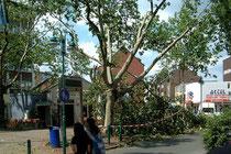 August 2004 - Am 18. Juli rast eine Windhose durch die Stadt. Bäume werden abgeknickt, Dächer abgedeckt - Millionenschaden! Zum Glück wird kein Mensch verletzt.