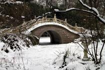 Zoo - Brücke im Chinesischen Garten