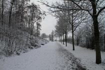 Alsum - Weg zum Rhein