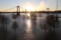 Februar 2011 - Nach dem großen Schnee kam das Hochwasser, wie hier an der Mühlenweide in Ruhrort. Bei knapp 10 Metern war jedoch Schluss, noch unterhalb der Hochwassermarke 2.