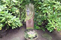 """Mai 2014 - Das Duisburger Original """"Heinebein"""" starb vor 100 Jahren. Mitglieder der Vereine Die Oldstädter und ZeitZeugenBörse Duisburg brachten einen Blumengruß an sein Grab."""