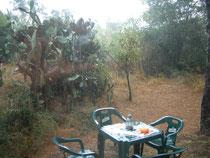 Regnen kann es auch immer Sommer mal.