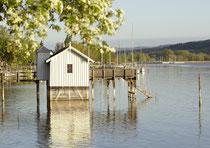 Bodman, graefliches Badehaus im Frühling 120430-279V