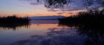 Morgendämmerung an der Fußacher Bucht mit Blick Richtung Pfänder 90917-105P
