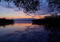 Morgendämmerung an der Fußacher Bucht mit Blick Richtung Pfänder 90917-105V
